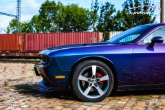 polep-aut-dodge-challenger-avery-riptide-rushing-color-flo-17