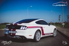car-wrap-mustang-stripe-design-studio-ales-polep-aut-arlon-true-blood-10