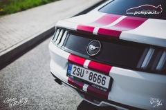 car-wrap-mustang-stripe-design-studio-ales-polep-aut-arlon-true-blood-5