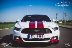 car-wrap-mustang-stripe-design-studio-ales-polep-aut-arlon-true-blood-9