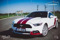 car-wrap-mustang-stripe-design-studio-ales-polep-aut-arlon-true-blood