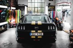 studio-ales-car-wrap-polep-aut-design-mustang-stripes-gold-kpmf-starlight